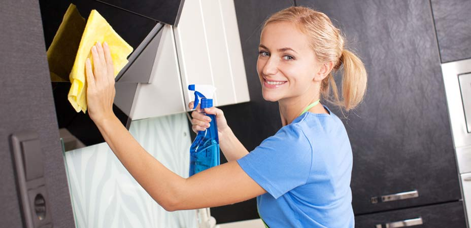 domestic cleaner at work cleaning a home